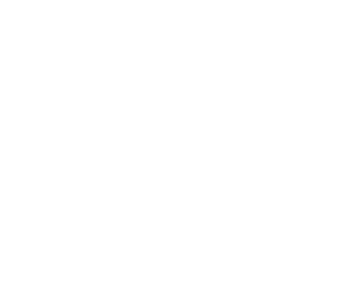 Rossi Labs